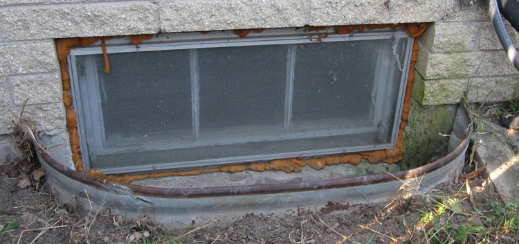 5 Maintenance Tips To Prevent Basement Leaks Renco