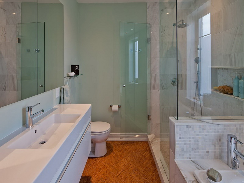 Narrow Basement Bathroom Idea Renco